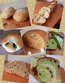 イベントパン集合写真7つ.png
